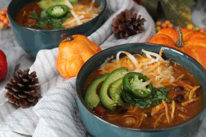 Instant Pot Pumpkin Chicken Chili - a hearty and healthy meal made easy in the Instant Pot! The pumpkin gives a nutritional boost and is a great way to sneak more veggies into your diet. This simple and flavourful meal will warm you up on a chilly day!