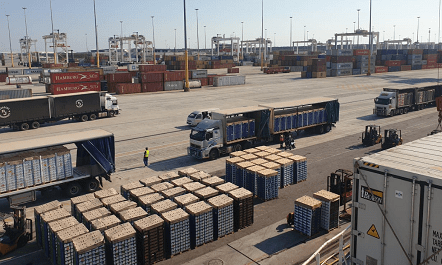 Crisis at SA harbours affecting citrus industry