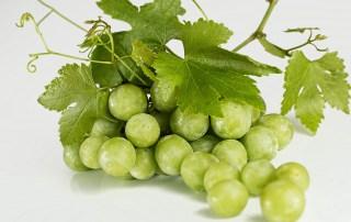 grapes-582207