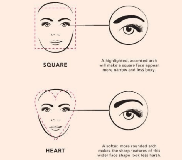 Find your ideal eyebrow shape2