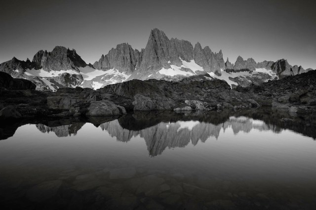 Nature Photography By Peter Essick