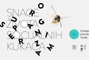 """Izložba """"Superorganizam - snaga života socijalnih kukaca"""" - Hrvatski prirodoslovni muzej 2019"""