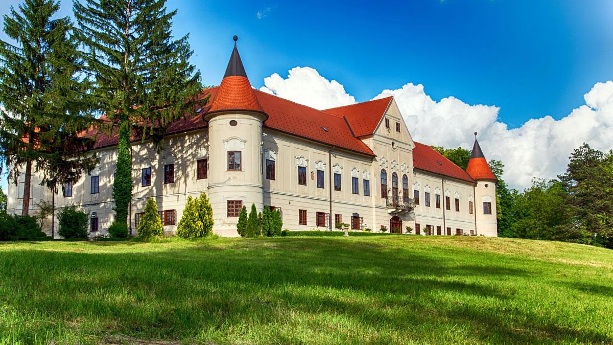 dvorac lužnica zaprešić / 2020