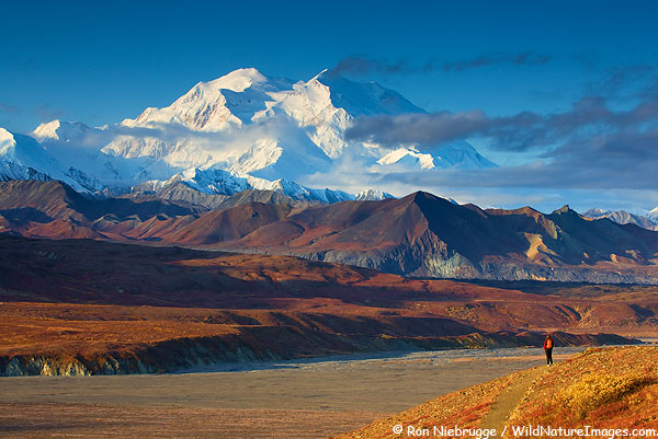 A hiker enjoying the view of Mt. McKinley, Denali National Park, Alaska. (model released)