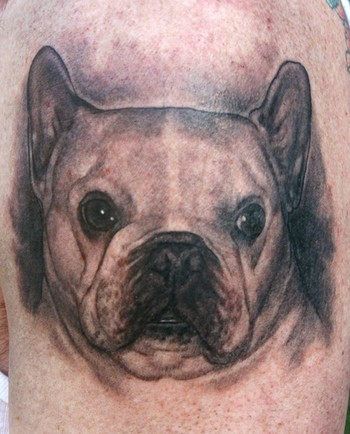 Tattoos · Phil Young. Pug face. Now viewing image 16 of 100 previous next