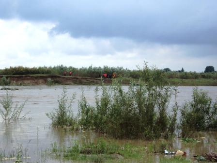Pompierii romaşcani au salvat o turmă de capre