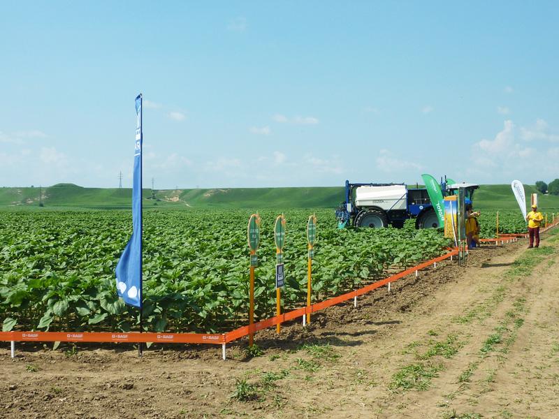 Fermierii nemţeni s-au Agroconnect-at cu BASF