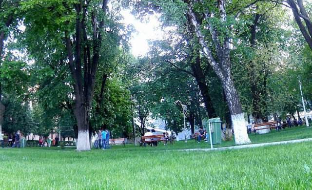 parculet muzeul de arta romanvoda cnrv