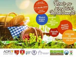 picnic-festival