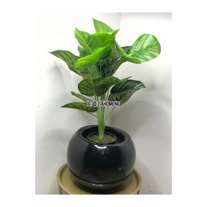 Oval Black Half Egg Shaped Flower Pot