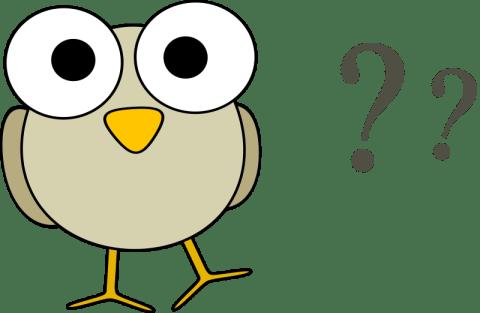 googley-eye-birdie-has-questions-800px
