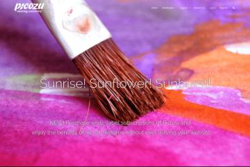 Picozu un editor di immagini gratuito on line dalle funzionalità impressionanti