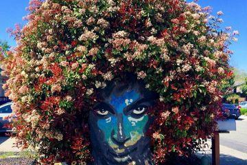 Un murale del cantante Prince molto particolare