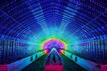 A Tokyo creata una serra per esperienze multisensoriali