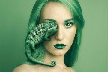 Volti umani e di animali accostati tra loro danno origine a  immagini surrealiste grazie all'abilità della fotografa Flora Borsi