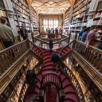 Librerie più belle del mondo la libreria di Harry Potter in Portogallo