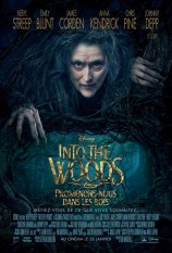 Into the woods critique1