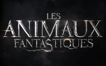 Les animaux fantastiques6