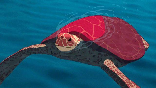 La tortue rouge critique1