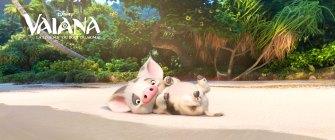 Pua est le petit cochon apprivoisé par Vaiana. Il est aussi attendrissant et débordant d'énergie qu'un petit chiot.