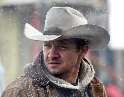Jeremy Renner stars in WIND RIVERPhoto: Courtesy of The Weinstein Company