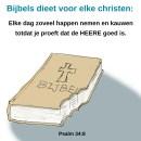 Bijbels dieet