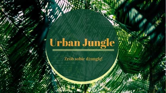 Urban Jungle – zrób sobie prywatną dżunglę!