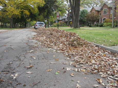 Leaves in streets - New NY State Leaf Collection Policy Endangers Bicyclists, Says NY Bicycle Lawyer