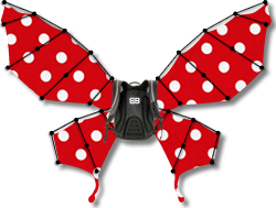 2 - Bike Butterfly Makes Bicyclists REALLY Stand Out, Says NY and PA Bicycle Lawyer