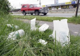 large litter 453 - NY Politicians Toughen Penalties Instead Of Providing Assistance to Enforce Existing Laws