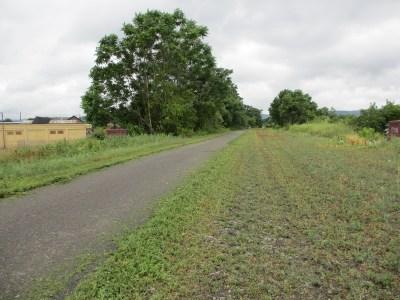 Lackawanna Rail Trail 01