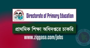 Directorate of Primary Education Jobs