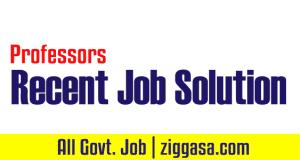 Recent Job Solution 2019 PDF