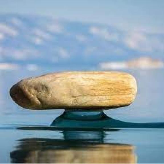 """Tento jav sa nazýva """"Baikal zen"""" ...... - Chcem všetko vedieť   Facebook"""