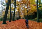 Wielertraining in de herfst