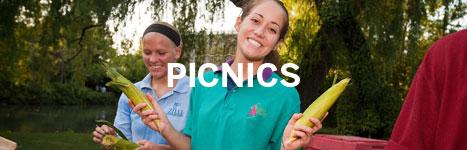 Sample Picnic menu