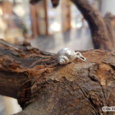 Zilveren Alikruik (M) hanger