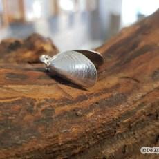Zilveren mossel schelphanger