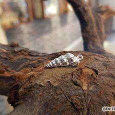 zilveren wentelrapje schelp hanger