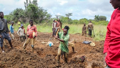 "Photo of ""Illegal miners damaging land: EMA"