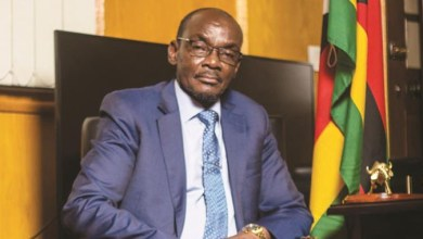Photo of MDC Alliance youths fire back at Mohadi