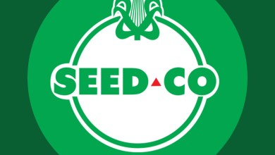 Photo of Seed Co among first to list on Victoria Falls Stock Exchange (VFEX)