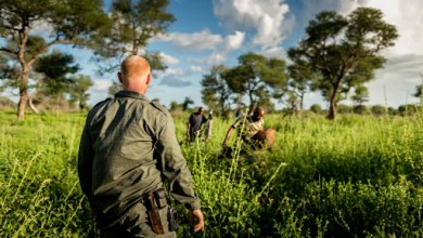 Photo of Zimbabwe's Rtd Colonel Dyck bashes terrorists in Mozambique