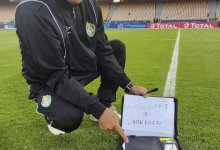 Photo of CHAN 2021: Zimbabwe accuse Cameroon of witchcraft after dead bat found on pitch