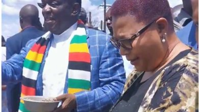 Photo of President Mnangagwa re-names Lands Ministry to include fisheries