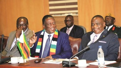 Photo of President Mnangagwa thanks Mohadi