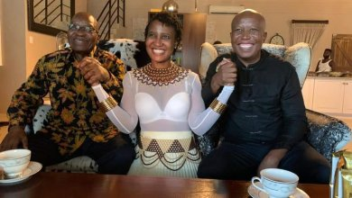 Photo of Calls for probe into who funded Zuma – Malema 'tea party'