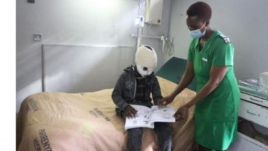 Photo of SA doctors offer free specialist services to Zimbabwean kid mauled by heyna