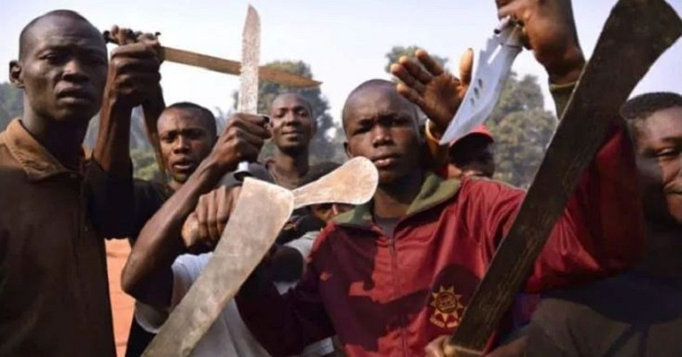 Zimbabwe Parliament to probe machete gangs