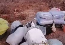 JUST IN: ZRP nabs 35 smugglers near Old Limpopo Bridge